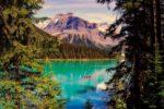 【たんぽぽツアー】カナダの世界遺産ジャスパー、大自然で遊ぼう!