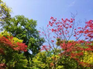 兵庫県の魅力1