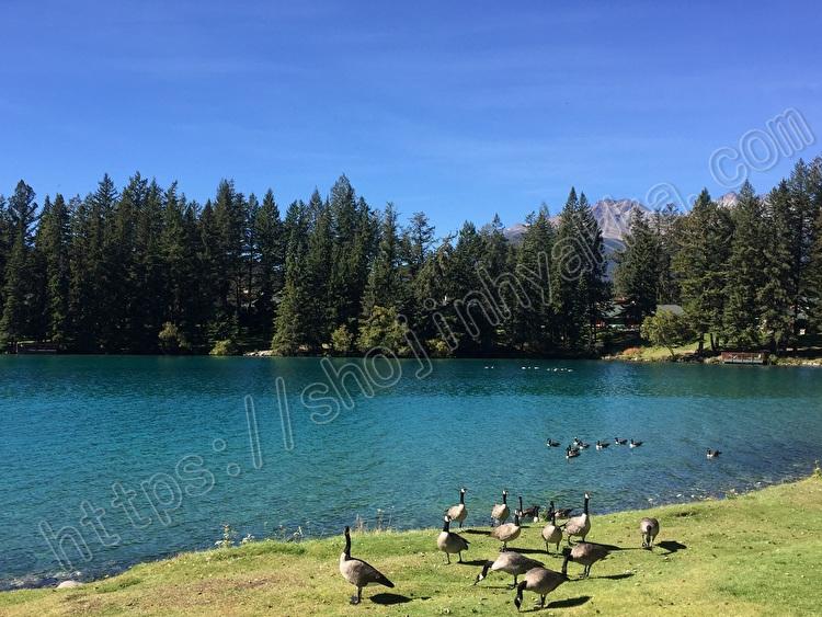 Beauvert lake